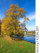 Купить «Осенний пейзаж. Вид на канал имени Москвы», эксклюзивное фото № 4034207, снято 2 октября 2012 г. (c) Елена Коромыслова / Фотобанк Лори