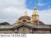 Купола Великокняжеской усыпальницы. Санкт-Петербург (2012 год). Стоковое фото, фотограф Александр Щепин / Фотобанк Лори