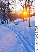 Купить «Зимний лес в лучах закатного солнца», фото № 4059767, снято 18 июня 2019 г. (c) Sergey Borisov / Фотобанк Лори