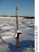 Купить «Вешка на болоте обозначенная сапогом», эксклюзивное фото № 4062787, снято 8 ноября 2012 г. (c) Валерий Акулич / Фотобанк Лори