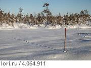 Купить «Вешка на заснеженном болоте», эксклюзивное фото № 4064911, снято 8 ноября 2012 г. (c) Валерий Акулич / Фотобанк Лори
