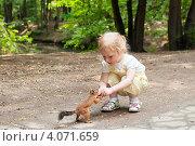 Купить «Маленькая девочка кормит белку», фото № 4071659, снято 20 июня 2011 г. (c) Марина Славина / Фотобанк Лори