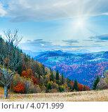 Купить «Осеннее утро в Карпатах, Украина», фото № 4071999, снято 23 января 2019 г. (c) Юрий Брыкайло / Фотобанк Лори