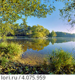 Купить «Пейзаж с деревьями на берегу озера солнечным осенним утром», фото № 4075959, снято 18 августа 2019 г. (c) Михаил Марковский / Фотобанк Лори