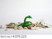 Змея. Стоковое фото, фотограф Анастасия Герасимова / Фотобанк Лори