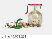 Встреча двух змеек. Стоковое фото, фотограф Анастасия Герасимова / Фотобанк Лори