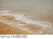 Мертвое море. Израиль. (2012 год). Стоковое фото, фотограф Елена Соломонова / Фотобанк Лори