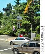 Купить «Светофор на солнечных батареях, на одном из перекрёстков города Сочи», фото № 4084391, снято 14 июля 2012 г. (c) Самойлова Екатерина / Фотобанк Лори