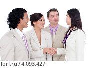 Купить «Команда деловых людей, девушки пожимают друг другу руки», фото № 4093427, снято 3 октября 2009 г. (c) Wavebreak Media / Фотобанк Лори