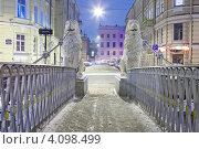 Купить «Санкт-Петербург. Львиный мостик.», эксклюзивное фото № 4098499, снято 6 декабря 2012 г. (c) Литвяк Игорь / Фотобанк Лори