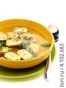 Купить «Легкий куриный суп с яичными рулетами», фото № 4102683, снято 9 декабря 2012 г. (c) Марина Сапрунова / Фотобанк Лори