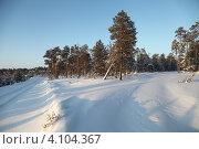 Купить «Зима в тайге. Югра», эксклюзивное фото № 4104367, снято 9 декабря 2012 г. (c) Валерий Акулич / Фотобанк Лори