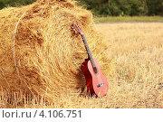 Гитара в поле. Стоковое фото, фотограф сергей саяпин / Фотобанк Лори
