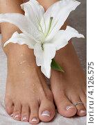 Купить «Привлекательная девушка с нежным белым цветком», фото № 4126575, снято 15 августа 2006 г. (c) Syda Productions / Фотобанк Лори