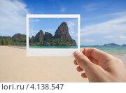 Рука, держащая моментальное фото на фоне тропического пляжа. Стоковое фото, фотограф Антон Соколов / Фотобанк Лори