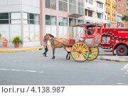 Купить «Запряженная лошадью повозка для туристов на улице Манилы», фото № 4138987, снято 12 мая 2012 г. (c) Сергей Дубров / Фотобанк Лори