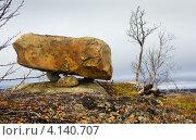 Сейд. Стоковое фото, фотограф Егор Богданов / Фотобанк Лори