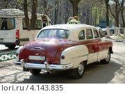Купить «Свадебный автомобиль ГАЗ-12 ЗИМ, вид сзади», фото № 4143835, снято 28 апреля 2012 г. (c) Малышев Андрей / Фотобанк Лори