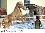 Купить «Девушка с лошадью на манеже», фото № 4163795, снято 1 января 2013 г. (c) Эдуард Кислинский / Фотобанк Лори