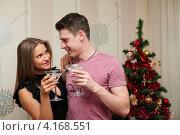 Купить «Счастливая пара. Девушка с парнем держут бокалы с шампанским возле новогодней ёлки», эксклюзивное фото № 4168551, снято 5 января 2013 г. (c) Игорь Низов / Фотобанк Лори