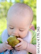 Купить «Ребенок ест фрукт грушу», фото № 4176343, снято 29 июня 2010 г. (c) Мария Сударикова / Фотобанк Лори