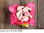 Купить «Домашние имбирные пряники в форме пасхальных кроликов», фото № 4191839, снято 28 декабря 2012 г. (c) Николай Охитин / Фотобанк Лори