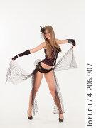 Купить «Девушка в эротическом наряде», фото № 4206907, снято 12 января 2013 г. (c) Литвяк Игорь / Фотобанк Лори