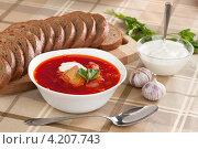 Купить «Борщ - украинский и русский национальный суп», фото № 4207743, снято 19 января 2013 г. (c) Александр Лычагин / Фотобанк Лори