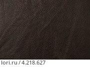 Текстура коричневой кожи. Стоковое фото, фотограф Андрей Дыкун / Фотобанк Лори