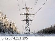 Купить «Обмёрзшая ЛЭП», фото № 4221295, снято 23 января 2013 г. (c) Николай Мухорин / Фотобанк Лори