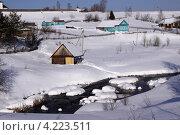 Зима в Ферапонтове в Вологодской области (2012 год). Стоковое фото, фотограф Елена Гаврилова / Фотобанк Лори