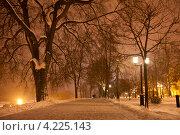 Купить «Ночной Тамбов», фото № 4225143, снято 19 января 2013 г. (c) Карелин Д.А. / Фотобанк Лори