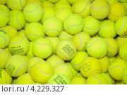 Купить «Мячи для большого тенниса», эксклюзивное фото № 4229327, снято 25 сентября 2011 г. (c) Алёшина Оксана / Фотобанк Лори