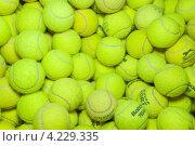 Купить «Мячи для большого тенниса», эксклюзивное фото № 4229335, снято 25 сентября 2011 г. (c) Алёшина Оксана / Фотобанк Лори