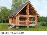 Строительство деревянного дома из бревен. Стоковое фото, фотограф Дарья Каба / Фотобанк Лори