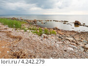 Купить «Побережье Балтийского моря», фото № 4242279, снято 8 июля 2012 г. (c) Andrei Nekrassov / Фотобанк Лори