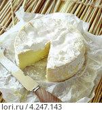 Купить «Французский сыр камамбер и нож, круглой формы», фото № 4247143, снято 22 июля 2019 г. (c) Food And Drink Photos / Фотобанк Лори