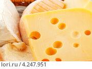 Купить «Различные сорта сыра», фото № 4247951, снято 18 августа 2012 г. (c) Иван Михайлов / Фотобанк Лори