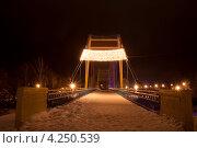 Купить «Город Тамбов. Пешеходный мост через реку Цна.», фото № 4250539, снято 1 февраля 2013 г. (c) Карелин Д.А. / Фотобанк Лори