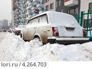Снегопад (2013 год). Редакционное фото, фотограф Artem Chechkenev / Фотобанк Лори
