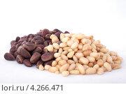 Купить «Кедровые орехи», фото № 4266471, снято 4 января 2013 г. (c) Литвяк Игорь / Фотобанк Лори