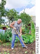 Купить «Мужчина вскапывает грядку на огороде», эксклюзивное фото № 4271883, снято 19 августа 2012 г. (c) Алёшина Оксана / Фотобанк Лори