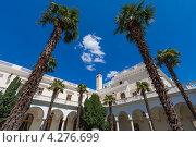 Пальмы в итальянском дворике Большого белого Ливадийского дворца, Крым (2011 год). Стоковое фото, фотограф Иван Сазыкин / Фотобанк Лори