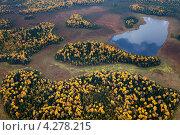 Купить «Озеро в осеннем лесу», фото № 4278215, снято 8 сентября 2011 г. (c) Владимир Мельников / Фотобанк Лори