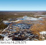Купить «Вид сверху на болото весной», фото № 4278571, снято 25 апреля 2012 г. (c) Владимир Мельников / Фотобанк Лори