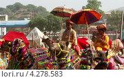 Украшенные верблюды на ярмарке, Индия (2013 год). Редакционное видео, видеограф Михаил Коханчиков / Фотобанк Лори
