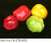 Плоды сладкого перца, плавающие в воде. Стоковое фото, фотограф Валерий Шитов / Фотобанк Лори
