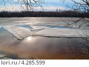 Купить «Весенний пейзаж. Югра, Сибирь», фото № 4285599, снято 19 апреля 2011 г. (c) Икан Леонид / Фотобанк Лори