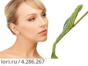 Купить «Молодая женщина с широким зеленым листом на белом фоне», фото № 4286267, снято 8 февраля 2011 г. (c) Syda Productions / Фотобанк Лори