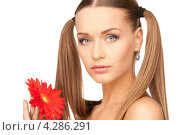 Купить «Очаровательная молодая женщина с двумя длинными хвостами на русых волосах с красным цветком в руке», фото № 4286291, снято 6 июня 2010 г. (c) Syda Productions / Фотобанк Лори